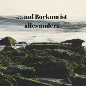 Read more about the article … auf Borkum ist alles anders