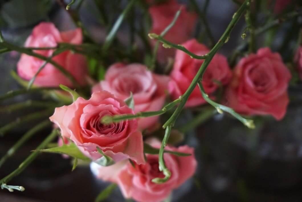 Friday-Flowerday-ElkeWorks