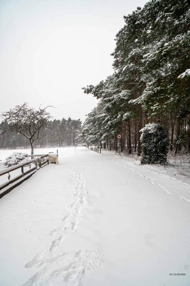 Winterwonderlland-elkevoss.de-05403