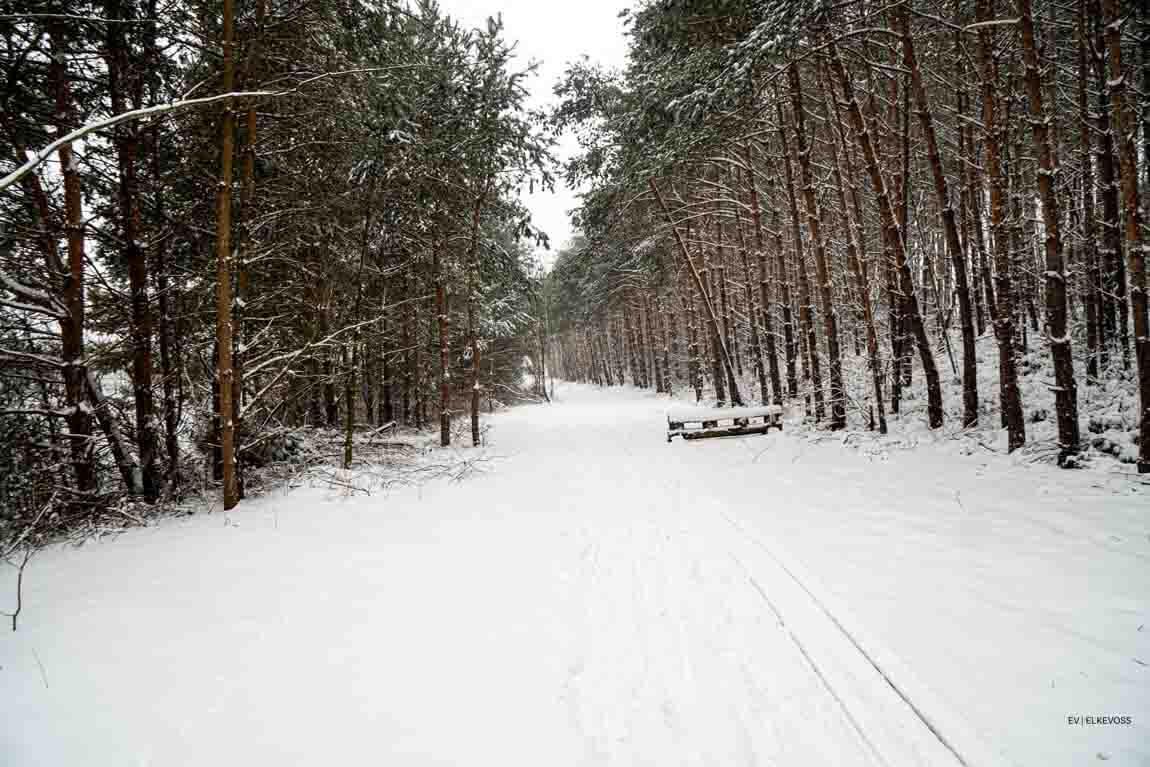 Winterwonderlland-elkevoss.de-05406