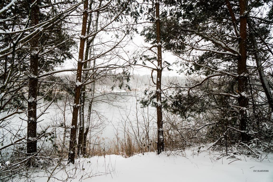 Winterwonderlland-elkevoss.de-05407
